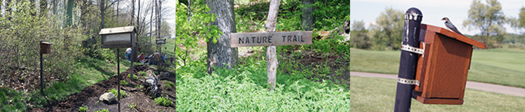 Nature Trail at Cranberry Highlands
